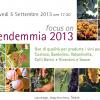 5 settembre: Focus on Vendemmia 2013