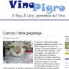 Custoza e Altra Garganega su VinoPigro