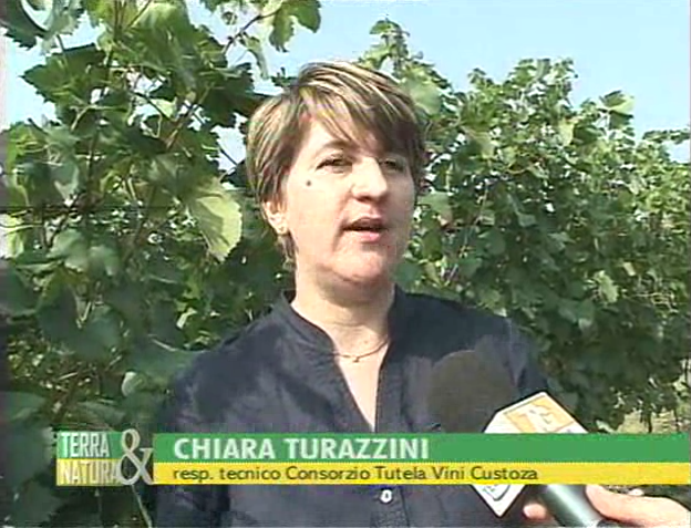 Chiara Turazzini: intervista su Telenuovo